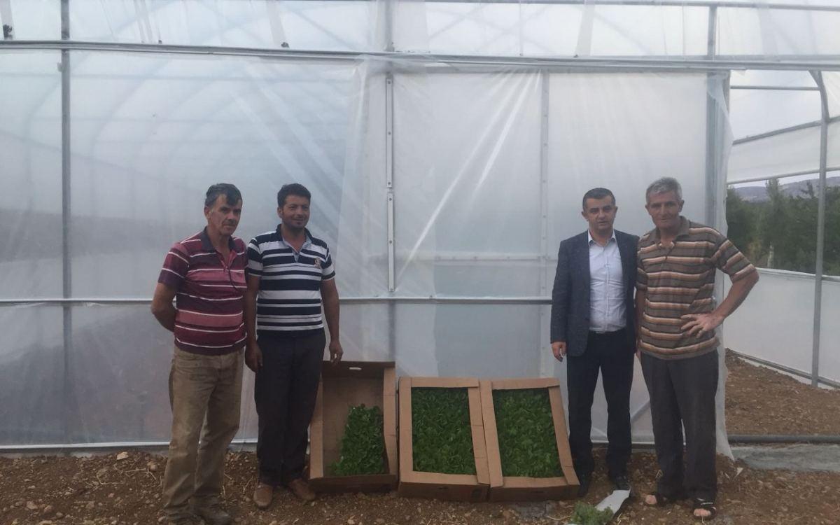 Konya - Taşkent İlçe Tarım Müdürlüğü
